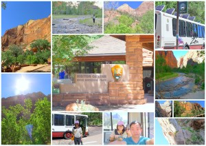 Some main captures that I got at the Zion National Park on the very first weekend that I arrived in Las Vegas.